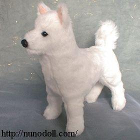 紀州犬の画像 p1_8