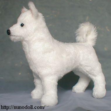 紀州犬の画像 p1_6